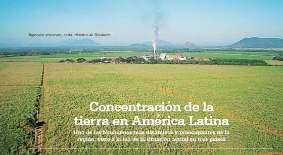 560x308xconcentracion-de-la-tierra-en-am-lat.jpg.pagespeed.ic.9sCNCsdksw (1)